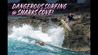 DANGEROUS SURFING AT SHARKS COVE