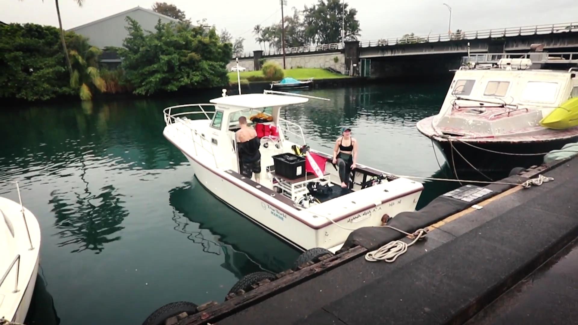 "Screenshotter ExploringTheUnderwaterWorldScubaDivingBigIslandHawaii 1'21"""
